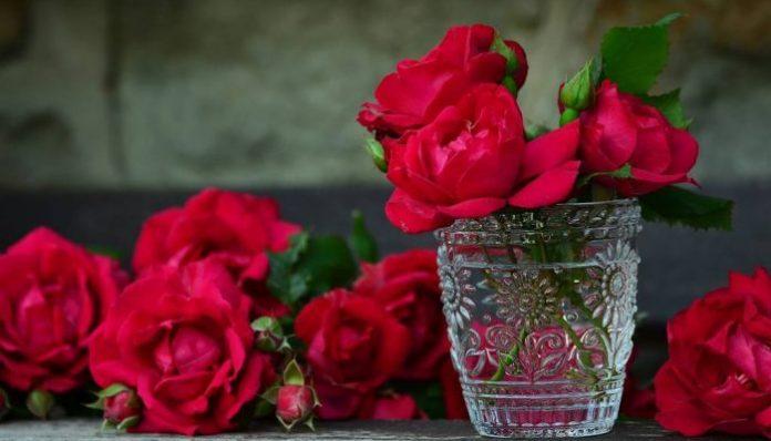Selain keindahan dan bau harum, bunga memiliki peran dan suasana yang kelam.(Foto: Digiyan.com)