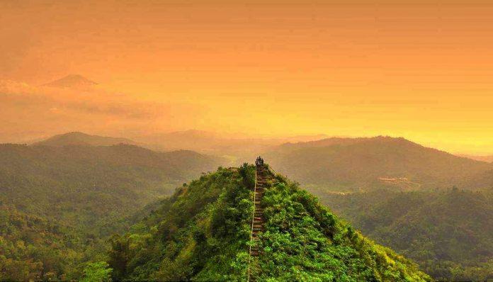 Selain panorama hijau dari luasnya kebun teh, di Kebun Teh Nglinggo kamu bakal disuguhi kesejukan udara khas pegunungan. Foto: @damianusadrian