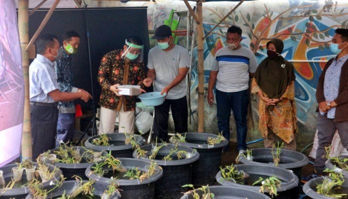 Tim Peneliti Fakultas Biologi UGM menggelar sosialisasi serta pelatihan pembuatan pakan lele dan suplemen organik cair dalam rangka mitigasi Covid-19. Foto: Biologi UGM