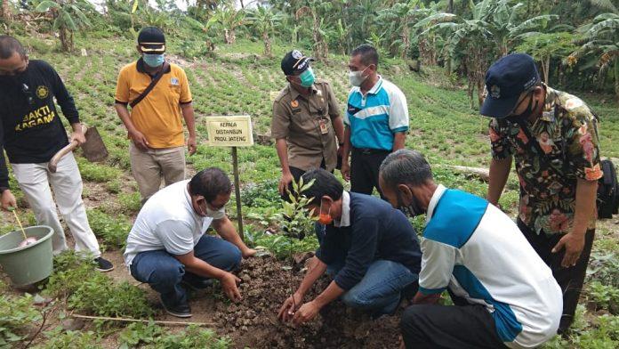 Pengda Kagama Jateng kembali menggelar aksi penghijauan di wilayah Jawa Tengah. Foto: Kagama Jateng