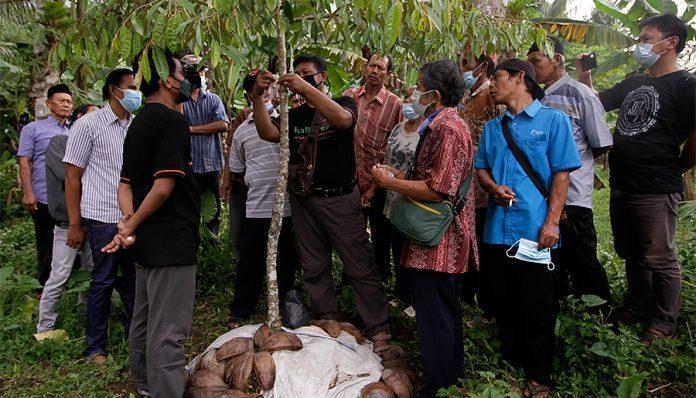 Kagama Buah dan Hortikultura (Kabuhor) mengadakan kegiatan pengabdian kepada masyarakat di Dusun Jetis, Desa Tampir, Kecamatan Candimulyo, Magelang, Jawa Tengah. Foto: Kabuhor